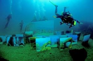 «Рафаэли моря» представили свои работы в Ласточкином гнезде